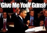 obama-gun-control-confiscation