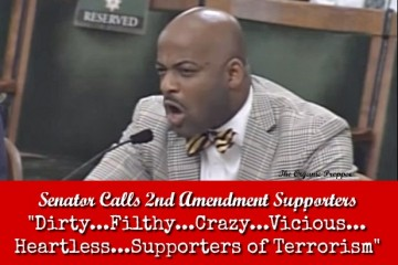 Senator-Calls-2A-Supporters-Dirty...Filthy...Crazy_...Vicious...Heartless...Supporters-of-Terrorism